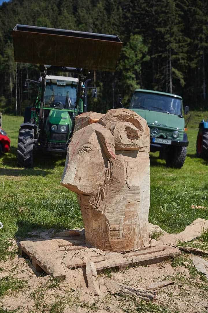 . . . Steinschaf-Bock - aus einem Stück Stamm geschnitzt . .